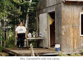 Mrs. Campbell's wild rice camp