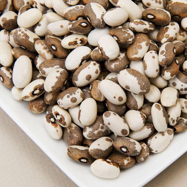 Dapple Grey Beans