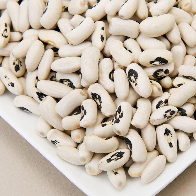 Europan Soldier Beans
