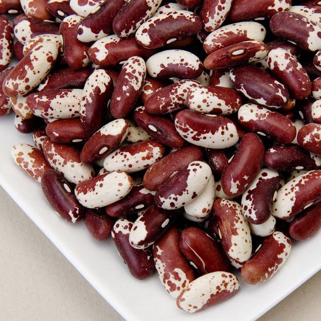 Jacobs Cattle (Trout) Beans