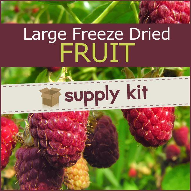 large freeze dried fruit supply kit