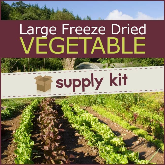 freeze dried vegetable supply kit